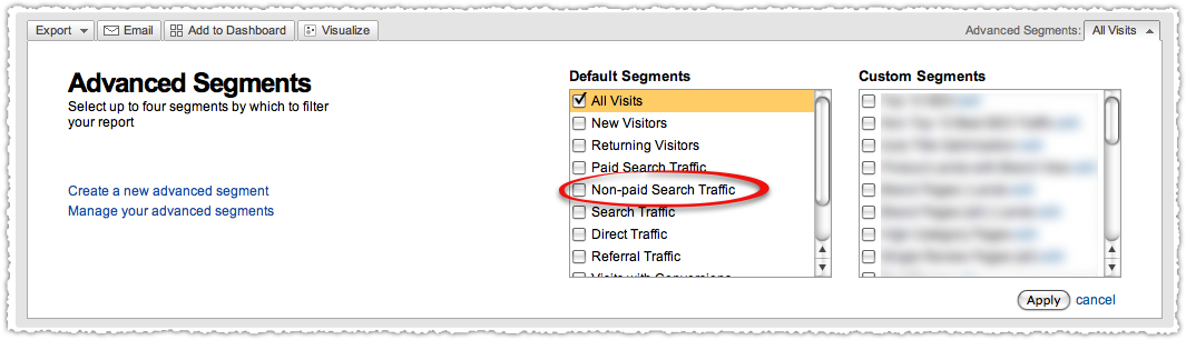 Non-paid Search Traffic Segment