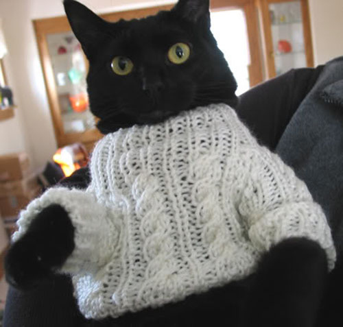 Basement Cat Sweater