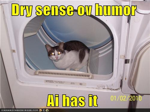Cat in a Dryer LOLcat