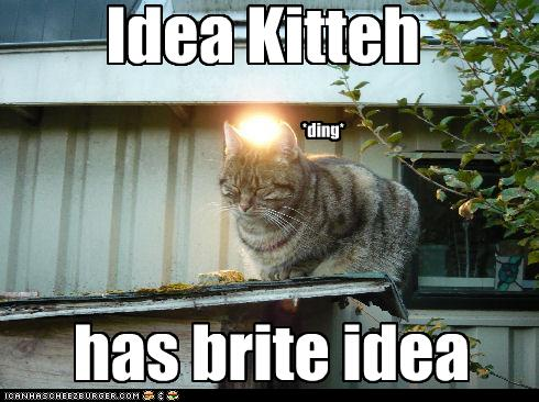LOLcat Lightbulb