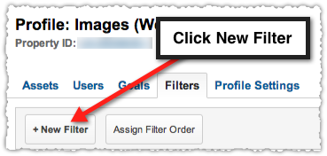 Google Analytics New Filter