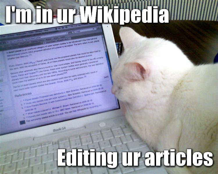 Cat Editing Wikipedia